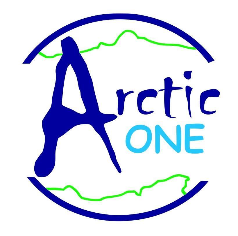 Arctic One Summer Challenge2018.