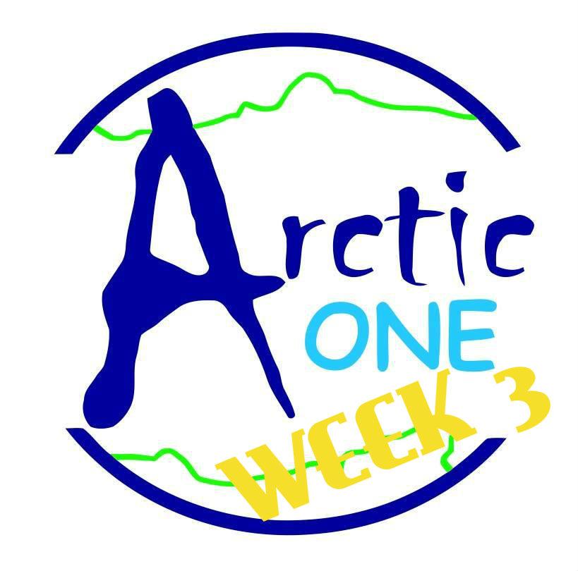 Arctic One Challenge: Week3